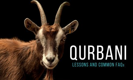 Qurbani – Lessons We Can Learn from the Ritual Sacrifice (Plus Q&A)