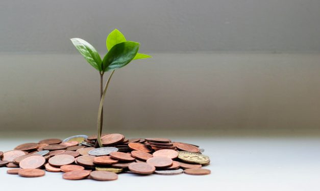 Quiz: Do You Know the Rules of Zakat? (Beginner)
